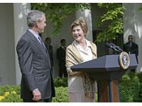 George e Laura Bush divorciar-se-ão depois da eleição por causa de Condi Rice?