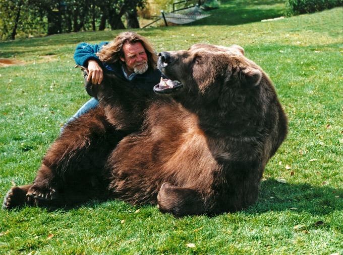 """Cabeça dentro da boca do urso Doug Seus aos 71 anos  é um dos treinadores de ursos mais conhecidos de Hollywood. Fez um vídeo onde brinca com um urso-pardo com mais de dois metros. Nas imagens pode ver-se a confiança que Doug tem no animal que até põe a cabeça dentro da boca do urso, sabendo que uma única mordidela pode ser fatal. Fotos Splash/All Over  Doug vive com a sua mulher, Lynne, no Utah, onde passa longas horas a conhecer e a treinar os ursos. """"Gastamos horas com eles. Não ensinamos truques mas chegamos-lhes ao coração, à alma"""", diz o treinador.  O casal tem três ursos treinados. O Bart Two, o Henoybump e o protagonista do vídeo, Tank, que já foi visto pelo mundo na série Guerra dos Tronos. Os ursos da família de Doug Seus já contracenaram com actores como Brad Pitt e Morgan Freeman."""