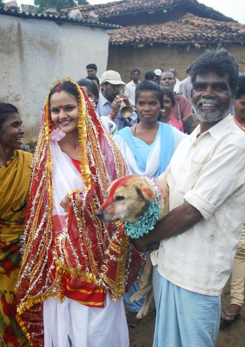 Indiana casada com cachorro