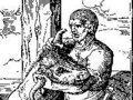 Partido da Terra-MPT repudia chacina de animais na Herdade da Torre Bela