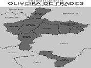 Oliveira de Frades - Os Verdes Insistem na Reposição da Praia em Sejães