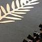 Festival de Cinema  de Cannes começará amanhã com escândalo