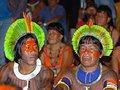 Pan Amazônia:  Se falta o ar, compremos os pulmões