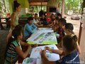 Sementes florestais nativas são oportunidade de profissionalização para jovens do Xingu Araguaia