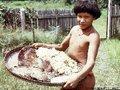 Pioneiro de pesquisa sobre cogumelos indígenas reencontra os Sanöma