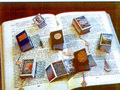 Desenhador russo entra no Guiness com seus mini-livros
