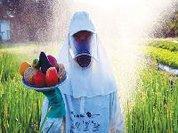 A ganância do agronegócio