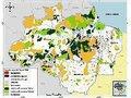Amazônia lar de uma grande civilização perdida