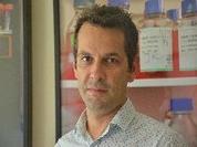 Investigadores da UC descobrem potencial marcador para Hipertensão Arterial Pulmonar