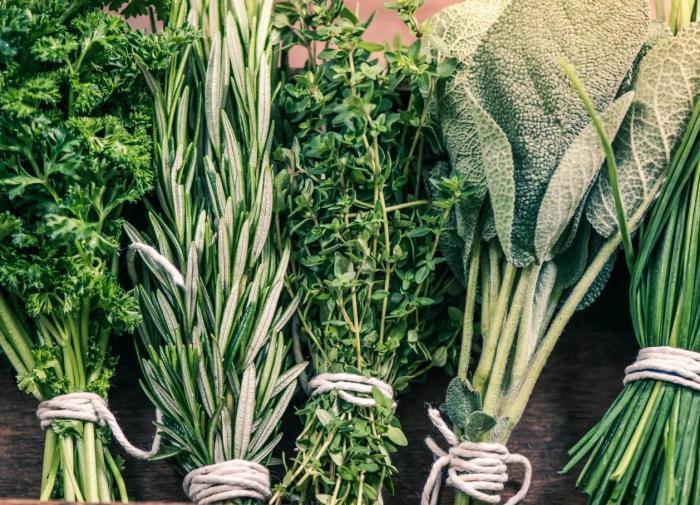 Ervas curativas para a saúde feminina