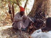 Dia 31 de Agosto: Dia da Medicina Tradicional Africana