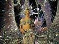 Em prol ao Centenário do Samba, atores homenageiam sambistas Leci Brandão e Alcione