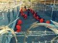 Cuba, França, Estados Unidos e a questão dos direitos humanos