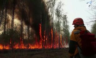Vladimir Putin instruiu o chefe do Ministério de Emergências a assumir o controle dos incêndios em Yakut