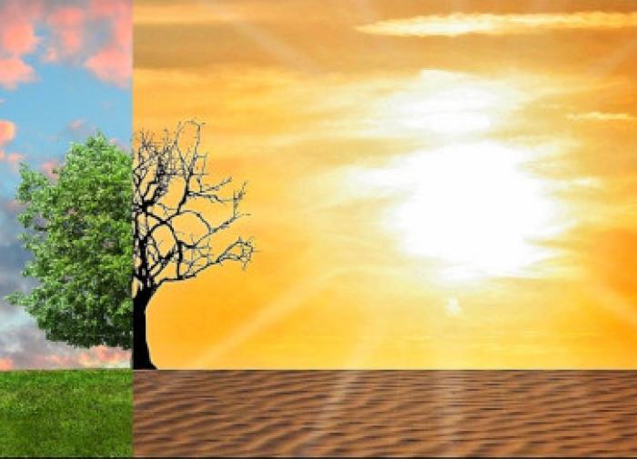 Alerta vermelho sobre mudanças climáticas: É tarde demais?