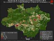 Grandes obras continuam estimulando desmatamento na Amazônia