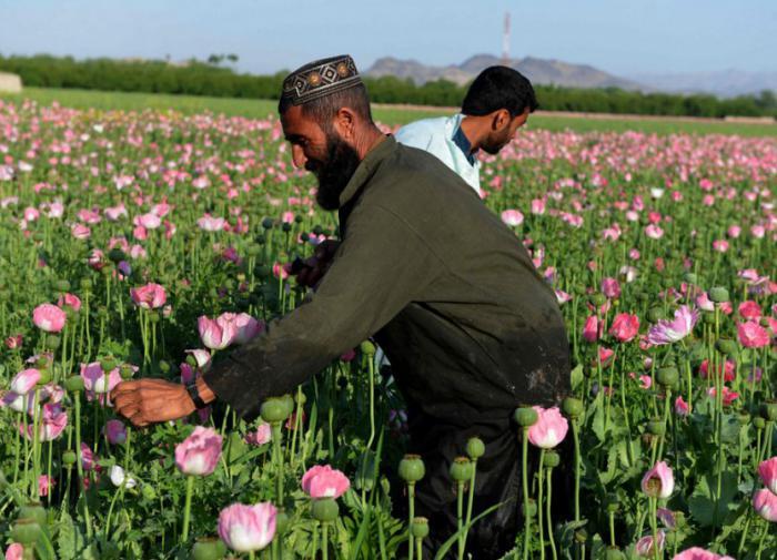 Rússia anuncia sua maior prioridade em meio ao caos no Afeganistão