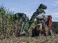 O que está em jogo com a liberação de Bolsonaro para expansão da cana na Amazônia e Pantanal?