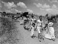 Até 88% dos palestinos foram mortos ou expulsos do que veio a ser Israel. Foto: Divulgação Fepal