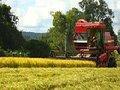 Plano Safra pode livrar agronegócio da crise