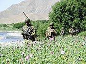 RAWA sobre Crimes de Guerra dos EUA no Afeganistão