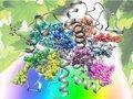 Será possível simular o complexo processo da fotossíntese nas plantas?