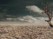 Calor: culpa do clima ou do agronegócio?