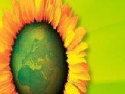 Conclusões do Conselho Nacional de Os Verdes