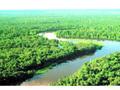 Brasil: Seminário discutirá empreendimentos para a Amazônia em Rondônia