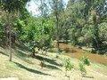 Prefeitura de Itabirito realizará Consulta Pública online para ampliação de seu Parque Ecológico