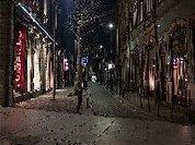 'Pandemia Mundial, Crise Global sem Governo Global': Ladislau Dowbor