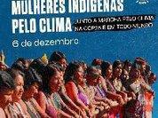 Mulheres indígenas do Brasil: unidade na Ação Global pelo Clima