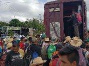 O custo do migrante: mitos versus fatos