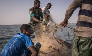 Vacinas: África na mira da ONU