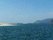Os Verdes Questionam Governo Sobre Derrame de Ácido Sulfúrico no Rio Sado