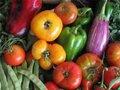 Campanha incentiva consumo de alimentos orgânicos
