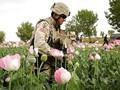 Afeganistão…vale a pena?