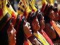 Povos indígenas; Democracia; Evolução