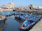 Verdes Contestam Acordo de Pescas entre a União Europeia e Marrocos nos Territórios Ocupados do Sahara Ocidental
