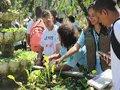 Turismo acessível atrai visitantes ao Jardim Botânico do Rio de Janeiro