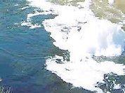 Canas de Senhorim - Os Verdes Alertam para Atentado Ambiental nas Imediações da ETAR