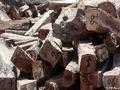 Guiné-Bissau: Sociedade civil denuncia corte e venda ilegal de madeira