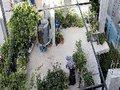 Projeto documenta a agro-resistência na Palestina contra ocupação e colonização israelense
