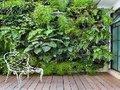 Jardim vertical: tendência sustentável que domina o mundo da decoração