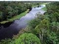 Grupo de cinco pessoas desapareceu na selva amazônica