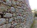 Silas Correa Leite: O Muro