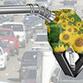 Produção de biodiesel já é a terceira maior do mundo