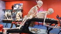 O museu reúne peças dedicadas à temática do erotismo - as mais antigas chegam a datar de dois mil anos atrás . Está apresentada a coleção de lâmpadas de argila romanas com desenhos eróticos e uma coleção de anticoncepcionais locais a partir do final do século XIX até a era soviética. Fotos Itar-Tass