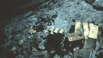 O navio S.S. Central America afundou em 1857 durante um furacão na Carolina do Sul com milhares de moedas, barras e pepitas de ouro. a Empresa Califórnia Odyssey Marine Exploration está realizando a retirada do tesouro.Em abril retirou cinco barras de ouro que valem cerca de US$ 1,2 milhão (R$ 2,66 milhões) como metal. Isso abriu um novo capítulo na saga do Central America, que incluirá resgatar o resto do ouro e explorar os destroços da embarcação. Fotos AP.