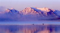 """A região montanhosa da República de Altai (república federada da Rússia na Sibéria) atrai viajantes de todo o mundo. A maior atração para os caçadores de maravilhas é o pico mais alto da Sibéria, o monte Belukha, uma das montanhas sagradas do mundo e venerada pelos povos indígenas como criatura viva.Os lagos do Altai são tantos que a região reivindica o título de """"país de milhares de lagos"""", detido atualmente pela República da Carélia, no noroeste da Rússia. Um dos lagos mais famosos é o Teletskoe, que tem origem e estrutura semelhantes às do Lago Baikal e conta com uma fenda na rocha preenchida por água cristalina, com praias rochosas íngremes e pequenas baías.O turismo a cavalo é uma das opções mais cobiçadas no Altai. Alguns locais só podem ser visitados a cavalo, que podem ser alugados em qualquer aldeia ou centro de turismo. Há opções para todos os gostos. Fotos  Pravda.ru"""